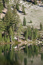 Trees on the shoreline of Emerald Lake. Lassen NP, California. - Photo #27041