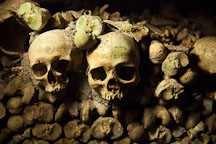 Skulls in the Paris catacombs. - Photo #31545
