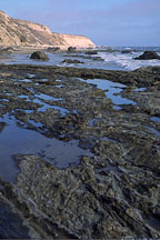 Tidepools. Crystal Cove State Park, California. - Photo #45