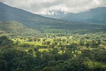 Hillside of Arenal Volcano. Costa Rica. - Photo #14146