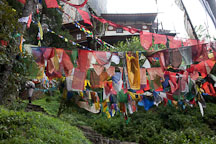 Prayer flags at the entrance to Taktshang. Paro, Bhutan. - Photo #24146