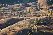 Painted Dunes at dawn. Lassen NP, California. - Photo #27149
