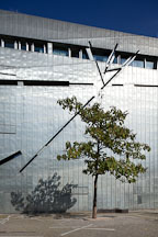 Tree in front of Jewish Museum. Berlin, Germany. - Photo #30549