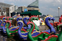 Paddle boats. Baltimore, Maryland, USA. - Photo #3872