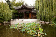 Classical Chinese Garden. Portland, Oregon. - Photo #28105