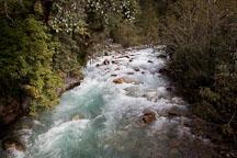Rushing waters of the Wang Chhu river. - Photo #23052