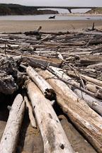 Driftwood at Pescadero state beach, California, USA. - Photo #4355