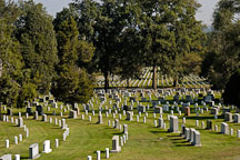 Arlington National Cemetery. Arlington, Virginia, USA. - Photo #11156