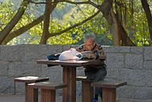 Old man reading newspaper in Kowloon Park. Hong Kong, China. - Photo #14756