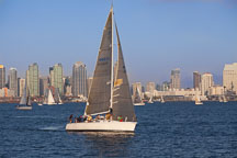 Sailing in San Diego bay. - Photo #26458