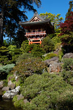 Japanese Tea Garden and pagoda. Golden Gate Park, San Francisco, California, USA. - Photo #3459