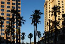Downtown San Jose, California, USA. - Photo #4858