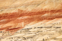 Painted hills with colorful claystone. - Photo #27860