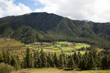 Pictures of Phobjikha Valley