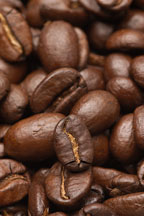 Coffee beans. - Photo #5064