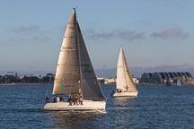 Sailboat in San Diego bay. - Photo #26464