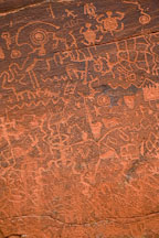 Petroglyphs of turtles, fish bones, and other birds and animals. V-Bar-V Ranch, Arizona, USA. - Photo #17765