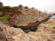 Rocky inlet at Point Lobos. California. - Photo #26967