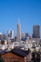 The Transamerica pyramid and the San Francisco skyline. San Francisco, California, USA. - Photo #1168