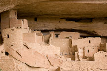 Cliff Palace contains about 150 rooms. Mesa Verde NP, Colorado. - Photo #18569