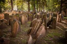 Old Jewish Cemetery in Prague. - Photo #29569