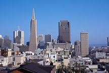 The Transamerica pyramid and the San Francisco skyline. San Francisco, California, USA. - Photo #1169