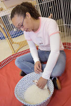 A volunteer plays with a pet rat. The wonderful world of rats. - Photo #5992