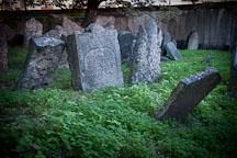 Gravestones in the old Jewish Cemetery. Prague, Czech Republic. - Photo #29507