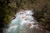 Wang chhu river. Thimphu Valley, Bhutan. - Photo #23107