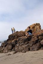 Pescadero state beach, California, USA. - Photo #4375