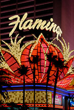 Flamingo hotel and casino. Las Vegas, Nevada, USA. - Photo #13376