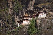 Morning light on the Tiger's Nest monastery. Paro Valley, Bhutan. - Photo #24277
