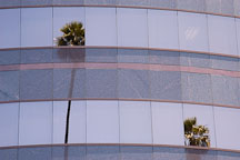 Reflection of palm trees on the windows of the Director's Guild of America building. Sunset Boulevard, Los Angeles, California, USA. - Photo #6425