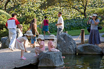 Families at the Japanese Friendship Garden. San Jose, California. - Photo #16908