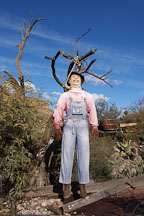 Hanging Effigy. Tortilla Flat, Arizona, USA. - Photo #5608