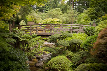 Moon bridge at the Portland Japanese Garden. - Photo #28181