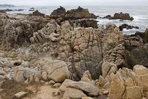 Rocky shoreline. 17-Mile drive, California, USA. - Photo #4781