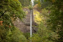 Latourell Falls in the Columbia River Gorge, Oregon. - Photo #28381