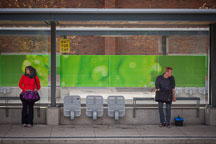 Waiting at the bus shelter in Hamilton. - Photo #33081
