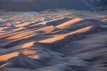 Dune field at sunset. Great Sand Dunes NP, Colorado. - Photo #33183