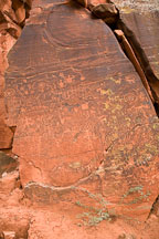 Rock slab covered in petroglyphs. V-Bar-V Ranch, Arizona, USA. - Photo #17783