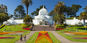 San Francisco Conservatory of Flowers. - Photo #26886