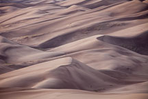 Close-up view of the dune field. Great Sand Dunes NP, Colorado. - Photo #33189