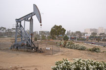 Oil pumps. Long beach, California, USA. - Photo #6589