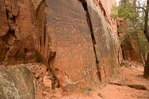 The petroglyphs at V-bar-V Ranch are located on a small section of rock. Arizona, USA. - Photo #17791