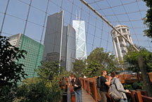 The Edward Youde Aviary is located in the center of Hong Kong. Hong Kong, China. - Photo #16493