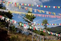 Prayer flags at Sangay Gang. Thimphu, Bhutan. - Photo #22994