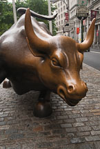 Wall Street Bull. New York City, New York, USA. - Photo #13196