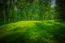 Native American effigy mound. Effigy Mounds National Monument, Iowa. - Photo #32998