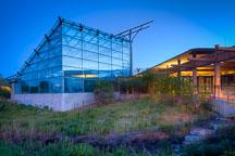 Reiman Gardens butterfly wing. Iowa State University, Ames, Iowa. - Photo #32898